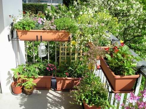d co leroy merlin jardin lognes 39 avignon avignon. Black Bedroom Furniture Sets. Home Design Ideas